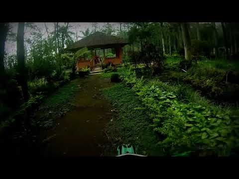 Ezad Lazim Songs Downloads Taman Kelir Kabupaten Kediri Kab