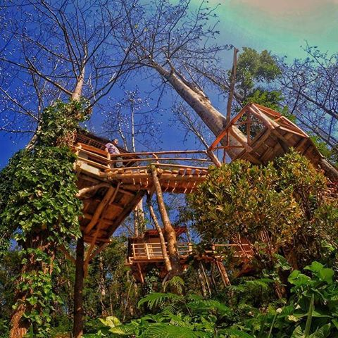 Keindahan Wisata Alam Taman Kelir Kediri Jawa Timur Lokasi Kab