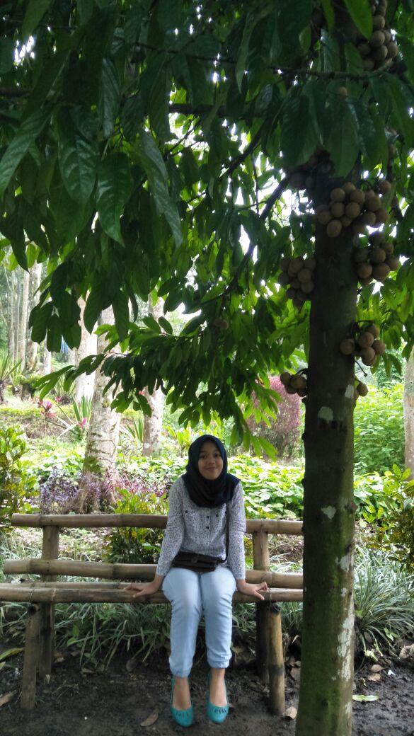 Travelling Taman Kelir Tiket Masuk Rp 3000 Kok Kab Kediri