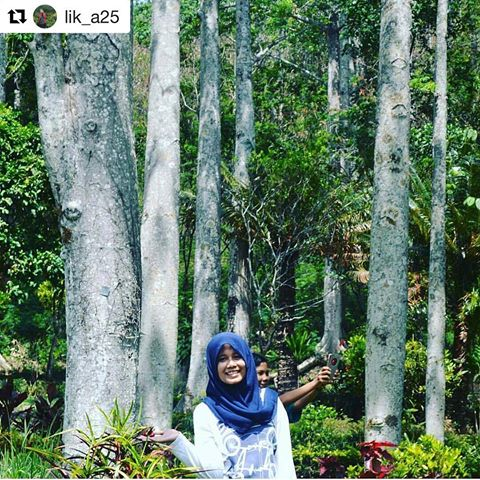 Wisata Kec Semen Kab Kediri Wisatakecamatansemen Instagram Repost Lik A25