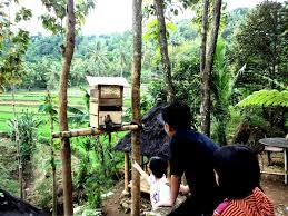 Wisata Kediri Sumber Podang Taman Kelir Kab