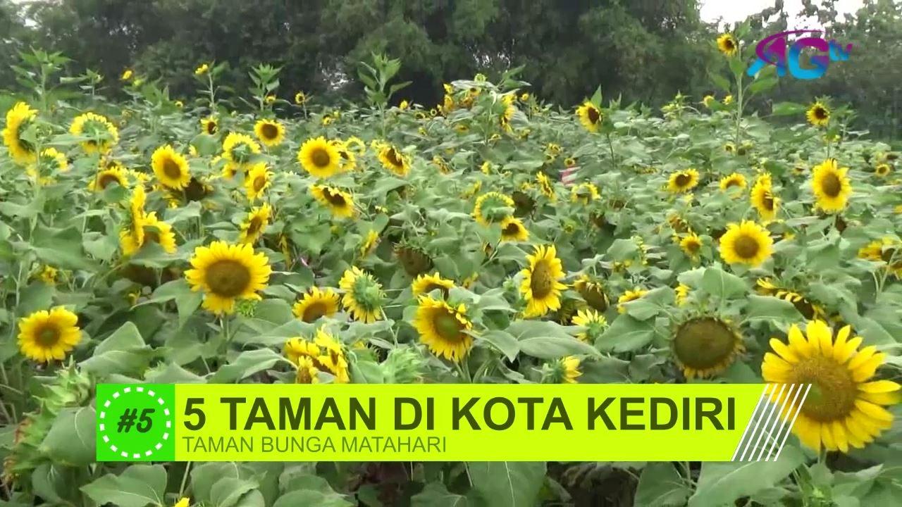 5 Taman Kota Kediri Layak Dikunjungi Agtvnews Sekartaji Kab