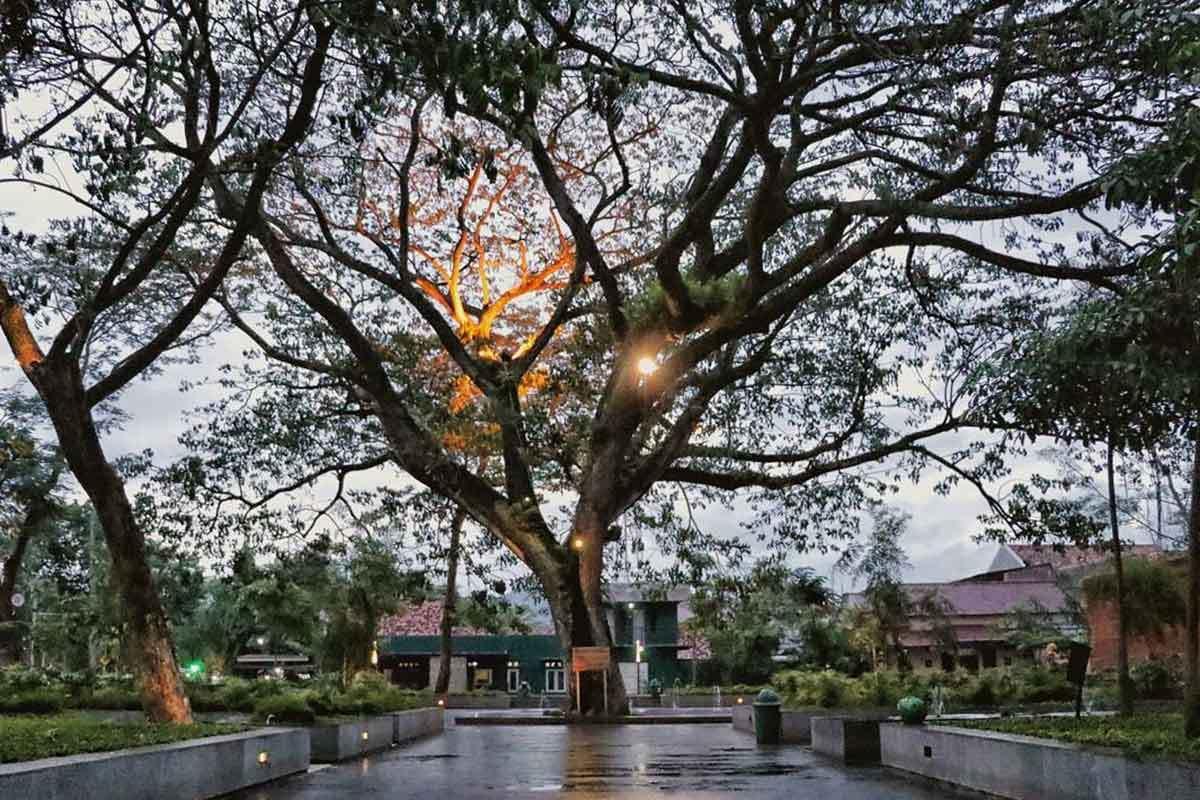 Tempat Nongkrong Hits Kediri Cec Kampung Inggris Taman Sekartaji Kab