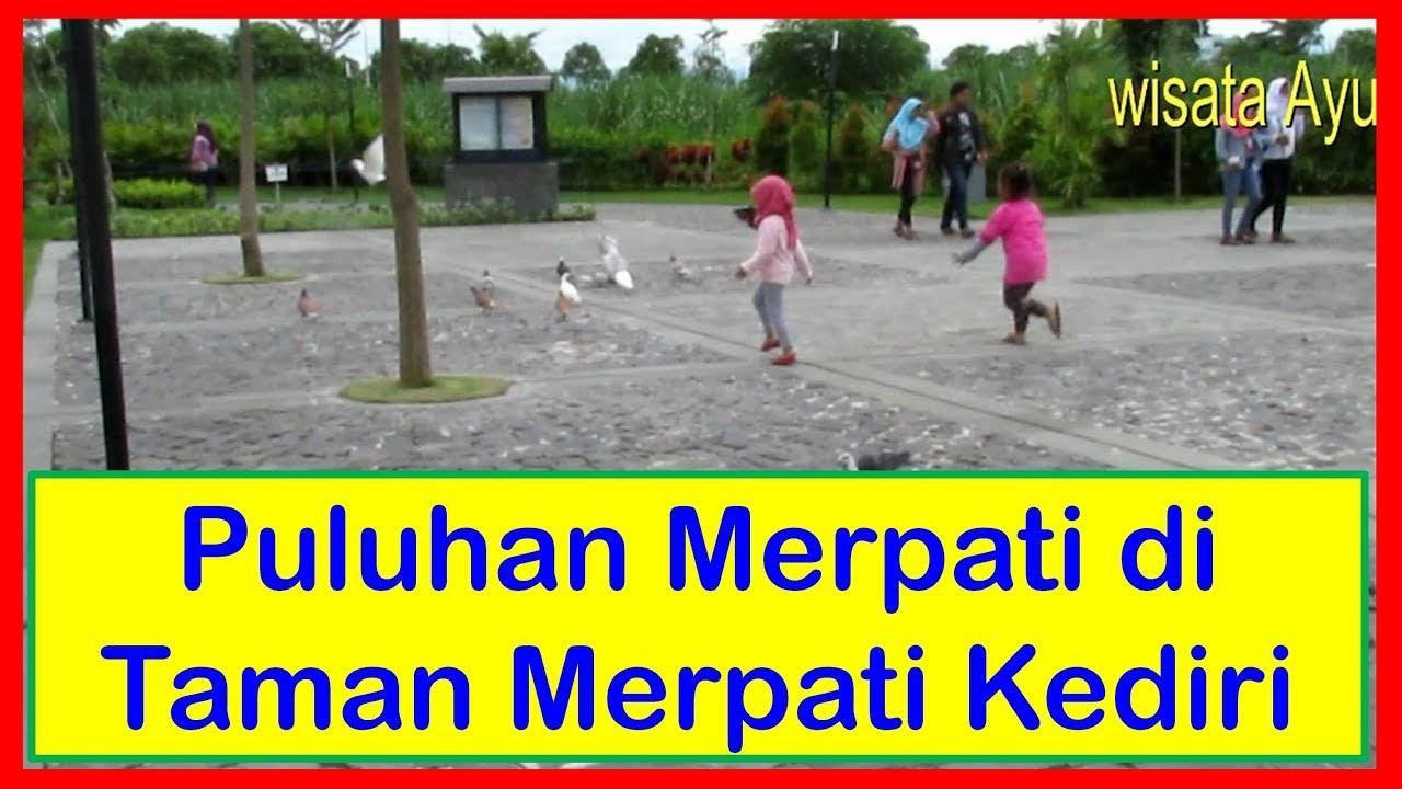 Taman Burung Merpati Wisata Kediri Youtube Tirtoyoso Park Kab