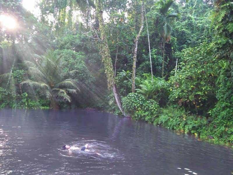 Wisata Sumber Ubalan Kediri Mistis Menarik Ulinulin Mata Air Kab
