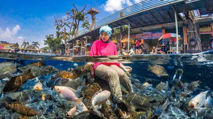 Wisata Klaten Umbul Ponggok Inilah 4 Destinasi Air Unik Menakjubkan