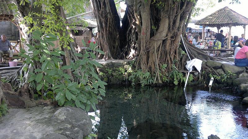 Umbul Manten Klaten Menikmati Kesegaran Air Pegunungan Media Bagi Menyukai