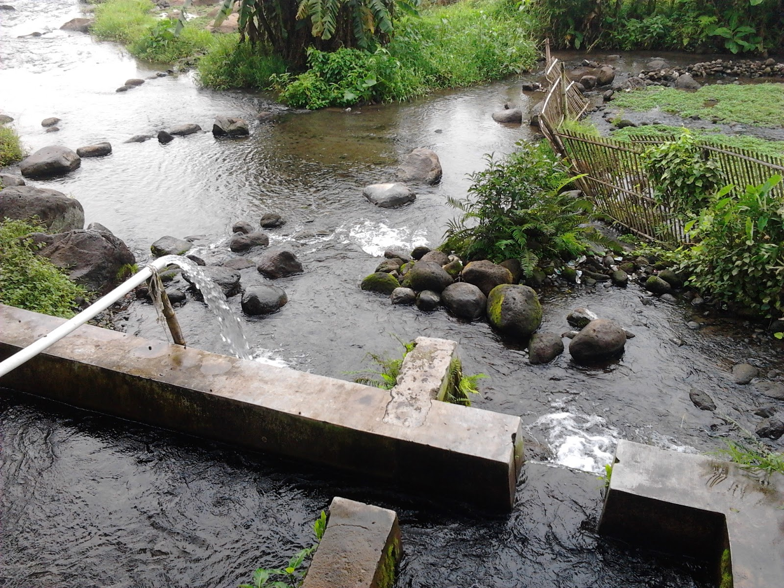 Indrastomo Umbul Nilo Lokasi Wisata Tersembunyi Kurang Promosi Pancuran Biasa