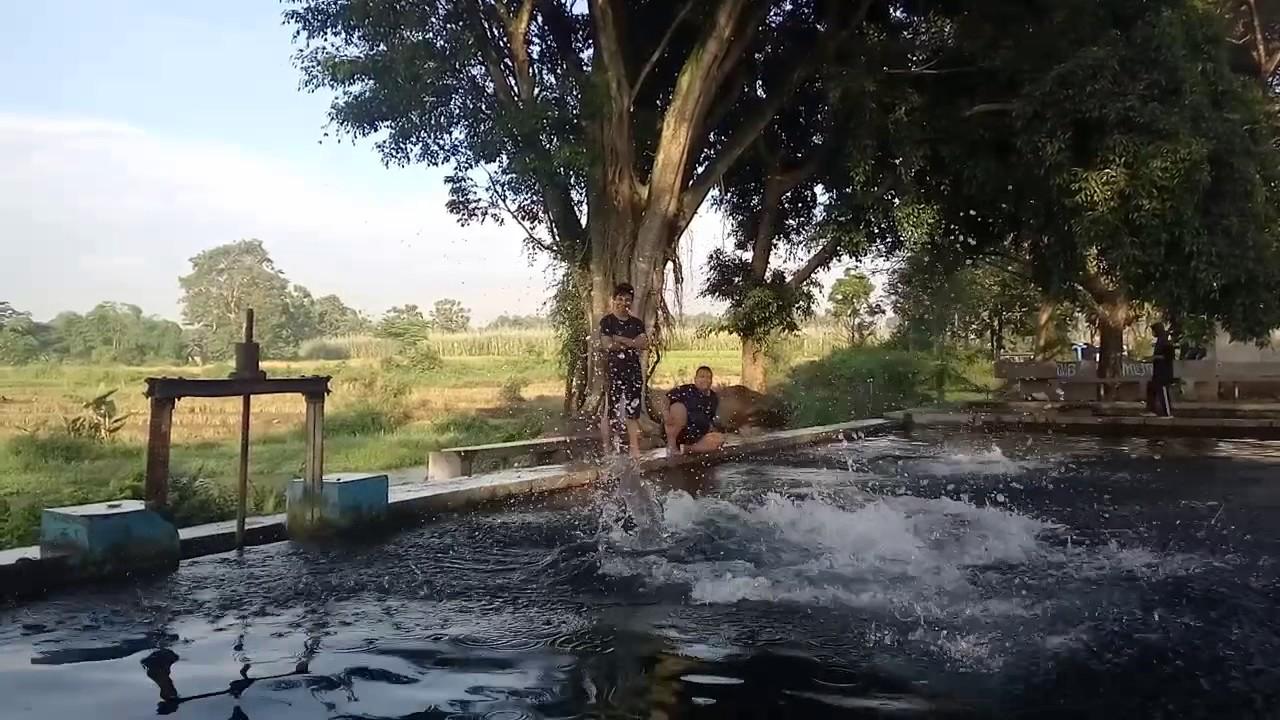Umbul Nilo Cokro Mbothinx Youtube Kab Klaten