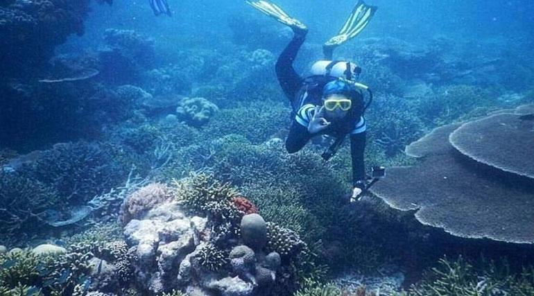 Company Profile Pulau Kera Secuil Surga Kupang Waterpark Kab