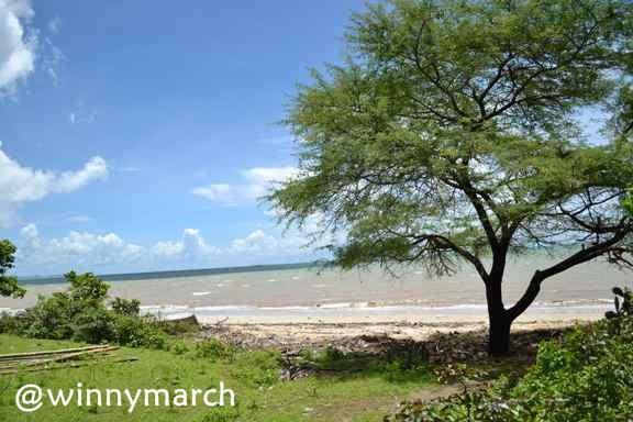 Maret 2013 Winny Marlina Batu Nona Kupang Pantai Kab