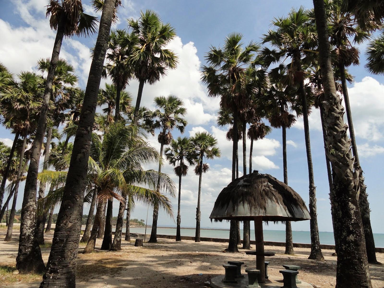 Pantai Lasiana Kupang Ntt Indonesia Gambarbagus Batu Nona Kab