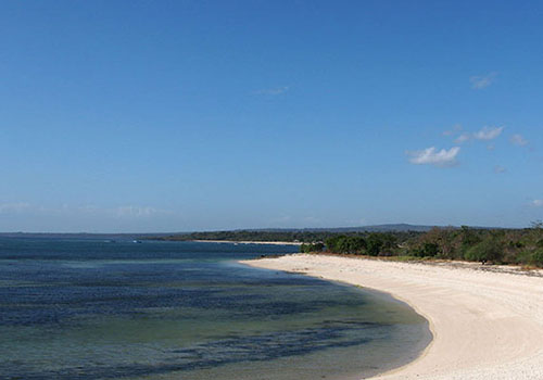 12 Tempat Wisata Kupang Dikunjungi Pantai Kelapa Tinggi Kab