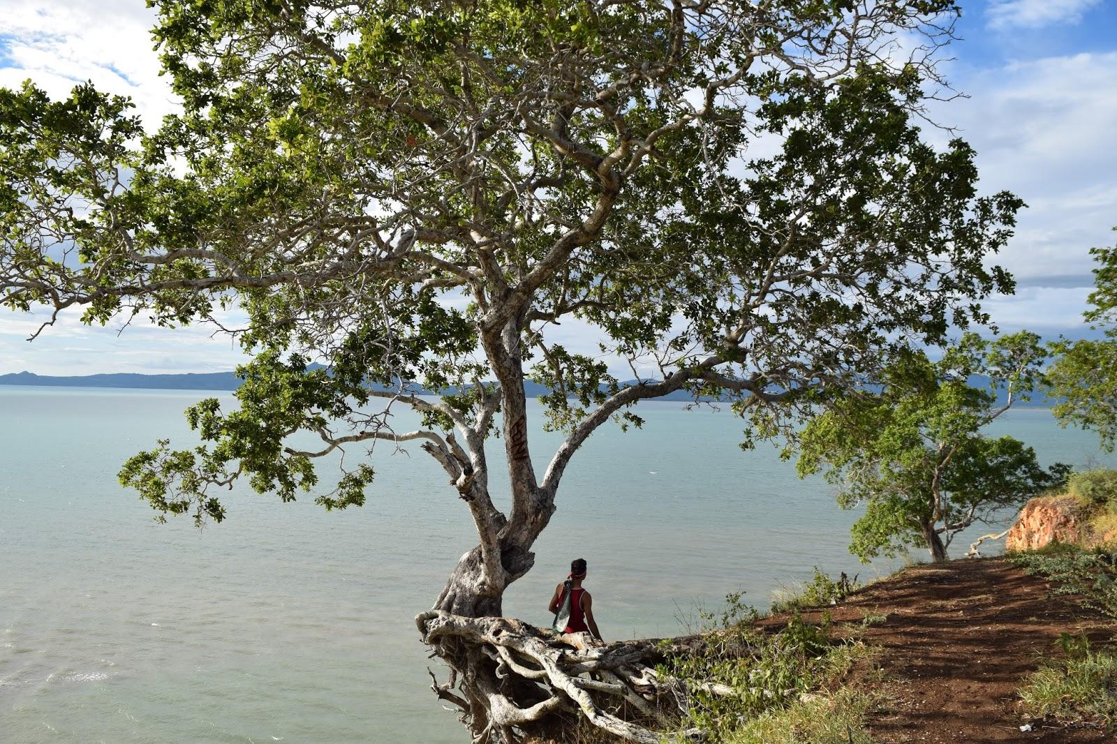 Arianto Ntt Pantai Panmuti Kabupaten Kupang Kelapa Tinggi Kab