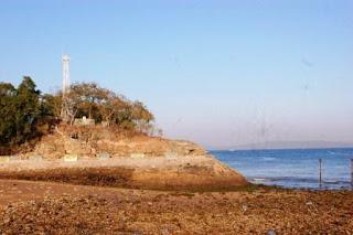 Didi Sadili Pantai Kota Kupang Sejatinya Indah Ntt Kelapa Tinggi