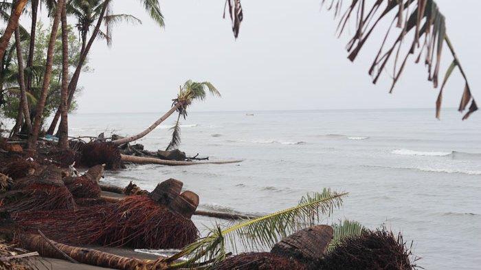 Epi Andalkan Pohon Pisang Sampah Pecahkan Gelombang Pantai Paris Kelapa