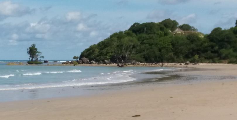 Media Ntt Pantai Teres Eksotis Selatan Pulau Timor Kelapa Tinggi