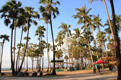 Nongkrong Terhits Jaman Ntt Tempat Pantai Kelapa Tinggi Kab Kupang
