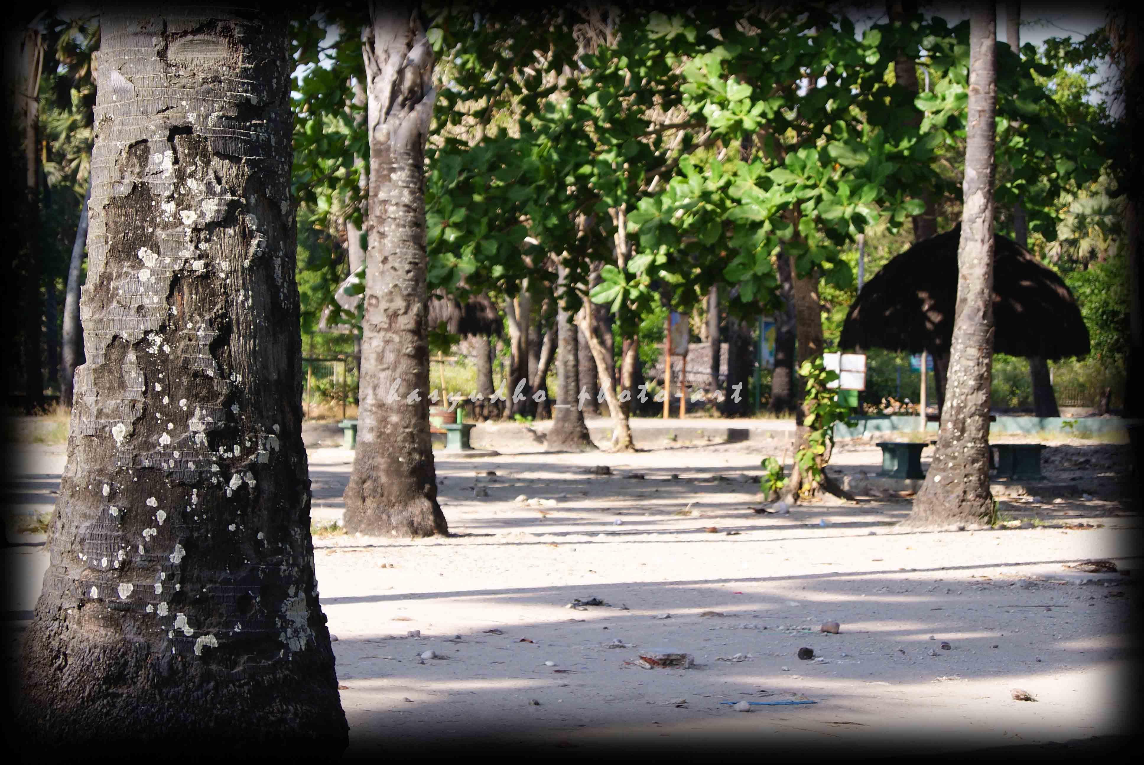 Pantai Lasiana Indah Timur Kota Kupang Hasyudho Jalan Lintas Ntt