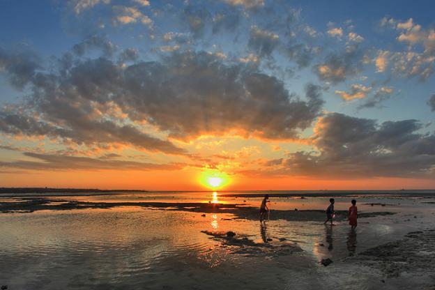 Pantai Lasiana Kupang Pesona Keindahan Alam Indonesia Kelapa Tinggi Kab