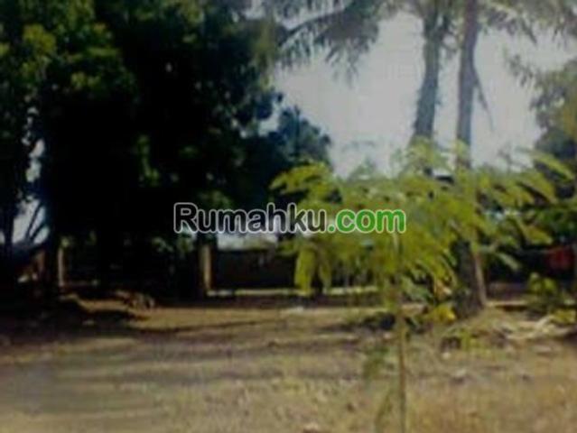 Tanah Kupang Ntt Mitula Properti Pantai Kelapa Tinggi Kab