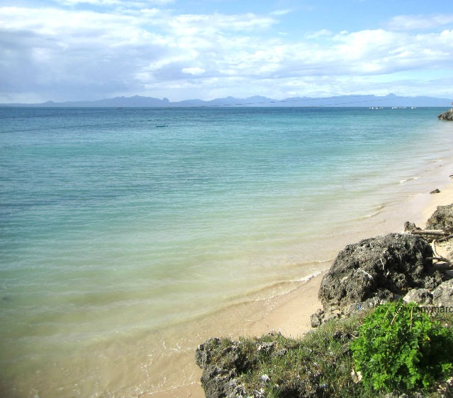 Tempat Wisata Kupang Nusa Tenggara Timur Pantai Pasir Panjang Kelapa