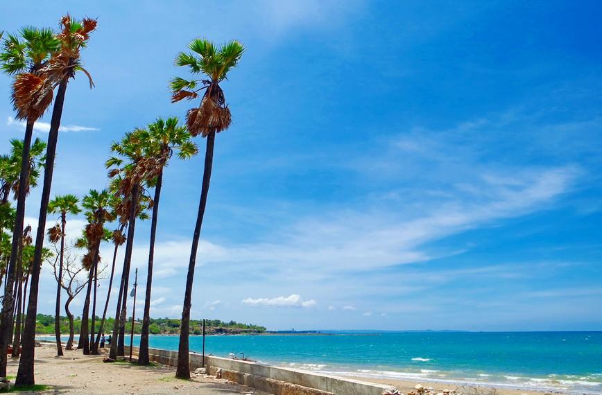 Tempat Wisata Kupang Wajib Kamu Datangi 687708 Pantai Lasiana Memiliki