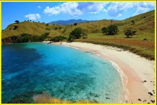 Info Ntt Pantai Pasir Panjang Memliki Keunikan Daya Tarik Tersendiri
