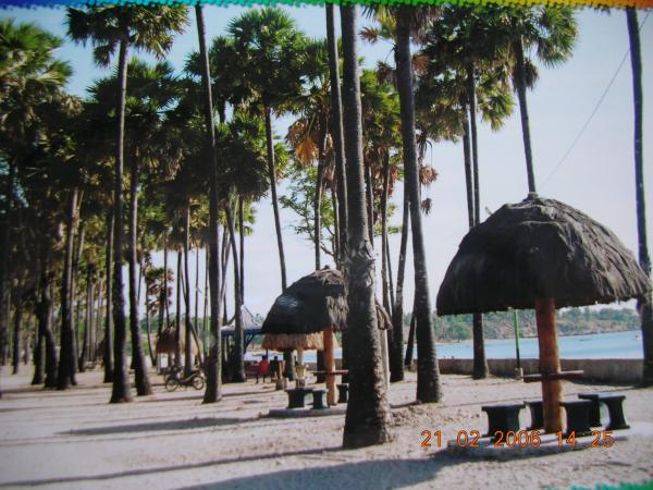 Ntt Kupang Http Photos Wikimapia Org P 00 Pantai Koepan