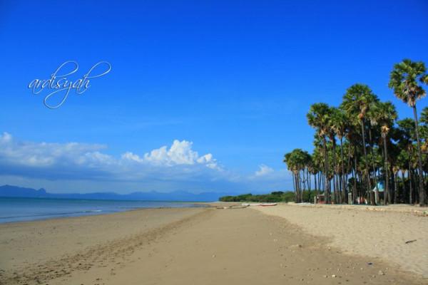 Anak Timur Pantai Lasiana Kupang Pasir Putih Karang Kekhasan Dibandingkan