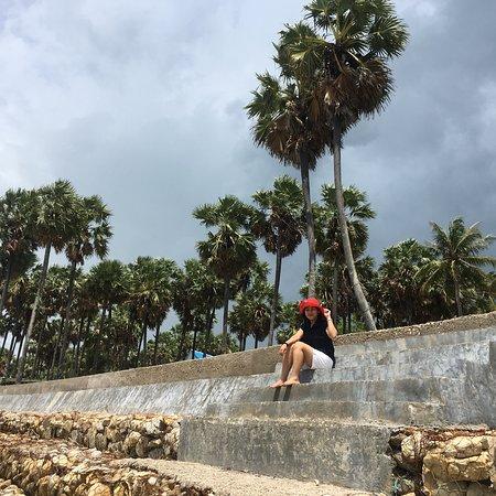 Pantai Lasiana Kupang Indonesia Review Tripadvisor Kab
