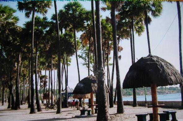 Wisata Kemanaaja Pantai Lasiana Destinasi Alam Menawan Kota Kupang Kab