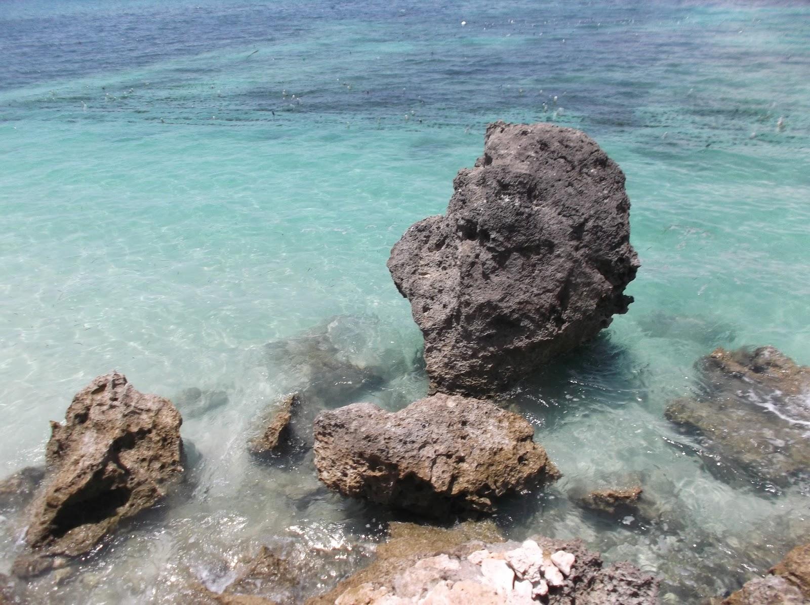 Arianto Ntt Pantai Lalendo Kabupaten Kupang Manikin Kab