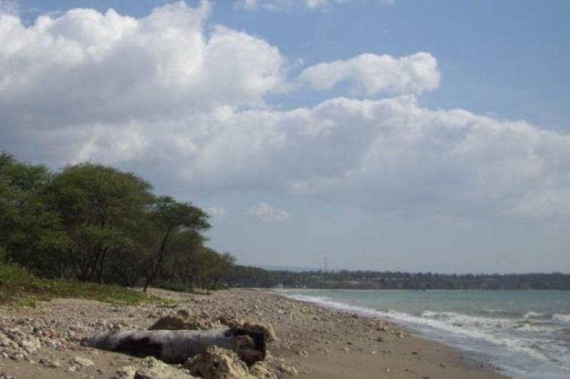 Destinasi Wisata Indonesia Bahari Kota Kupang Ntt Pantai Nenas Manikin