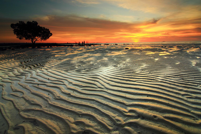 Alam Indonesia Mengejar Matahari Kupang Alur Senja Pantai Nunsui Akibat
