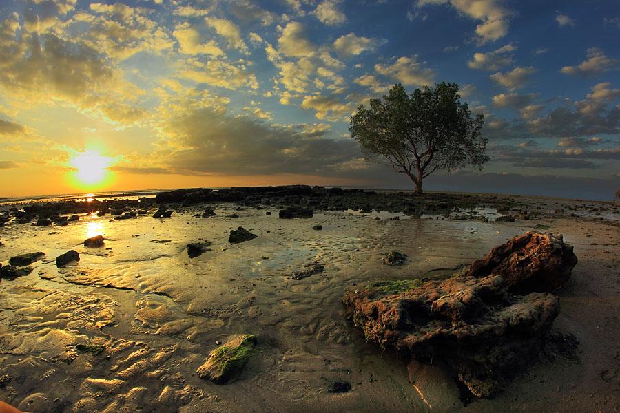 Indonesia Sungguh Indah Senja Hari Pantai Nunsui Kab Kupang