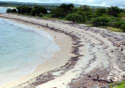 Bupati Kupang Benahi Pantai Wisata Tablolong Pos Kab