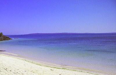 Pantai Tablolong Kupang Berita Harian Terbaru Kab