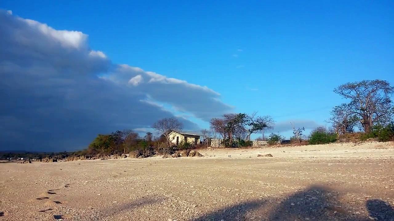 Pesona Pantai Tablolong Kupang Ntt Surga Biota Laut Terumbu Karang