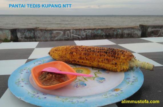 Jagung Bakar Pantai Tedis Kupang Ntt Alim Mustofa Bersandar Setelah