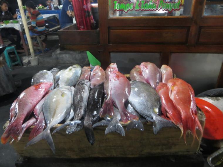 Ikan Bakar Kampung Solor Kupang Oleh Tubagus Al Amin Kompasiana