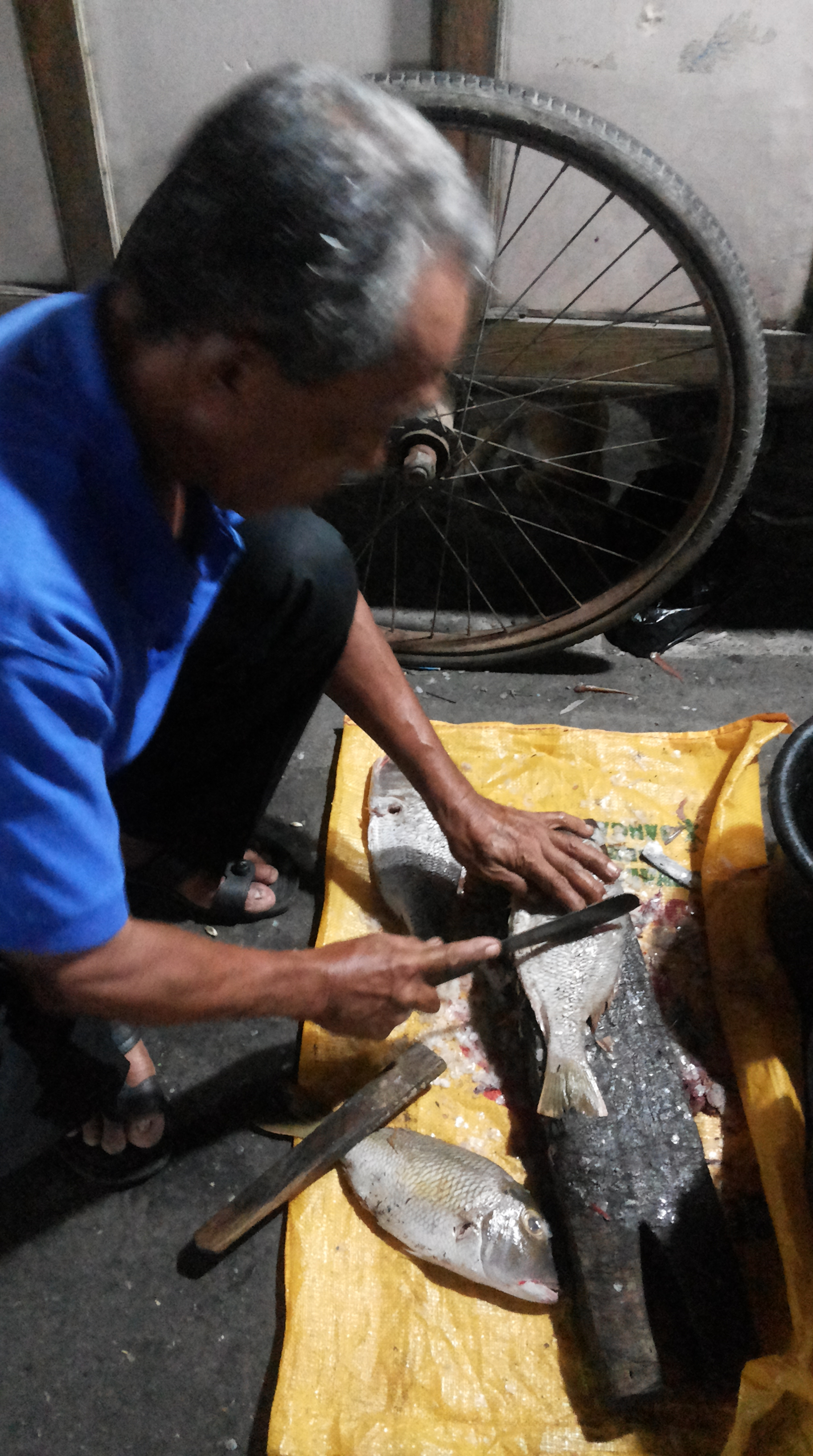 Kuliner Pasar Malam Kota Kupang Rasa Jawa Kita Membersihkan Ikan