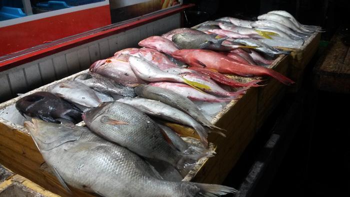 Pasar Malam Kampung Solor Kupang Suguhkan Ikan Bakar Segar Sebelum