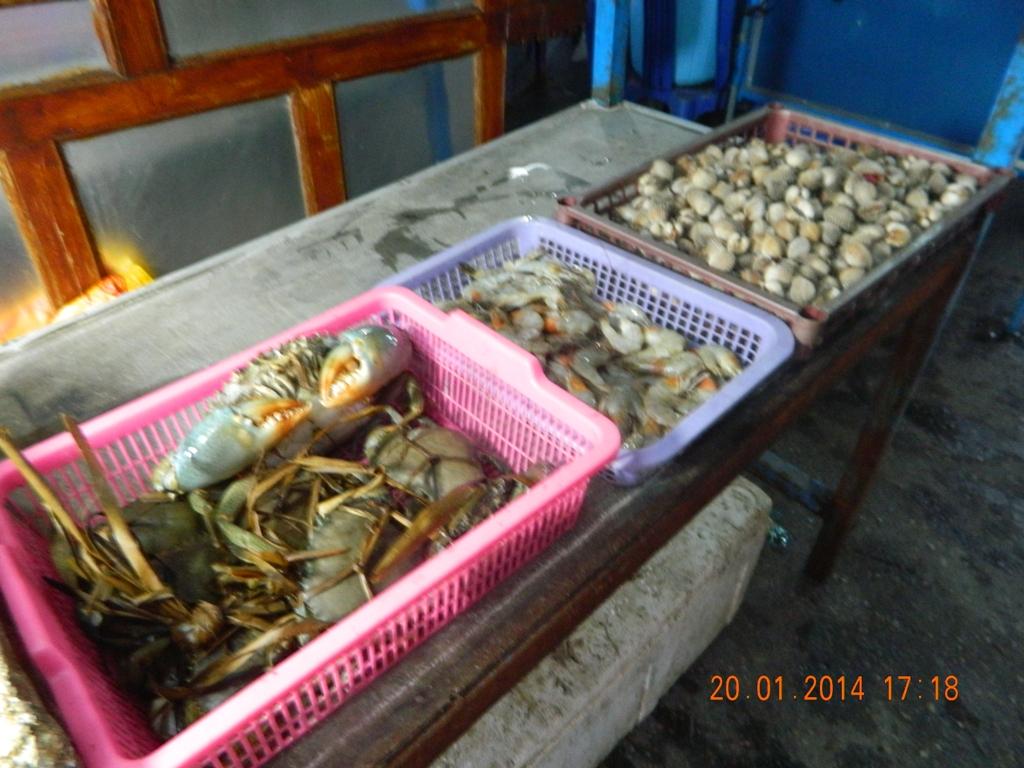 Tanah Timor Lelebo 2 Keliling Kabupaten Kupang Galuh Saina Van