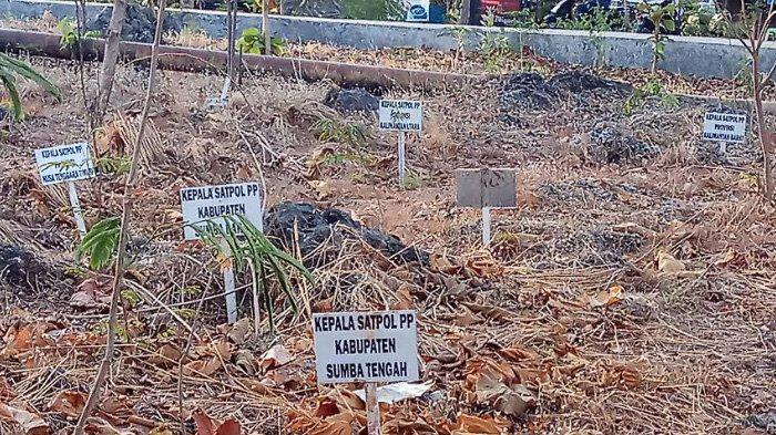 Nama Taman Nostalgia Kota Kupang Mirip Kuburan Papan Kab