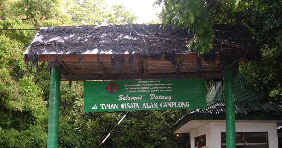 Balai Besar Ksda Ntt Twa Camplong Taman Wisata Alam Kab