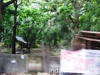 Indahnya Indonesia Taman Wisata Camplong Kaki Gunung Fatuleu Sempat Melihat