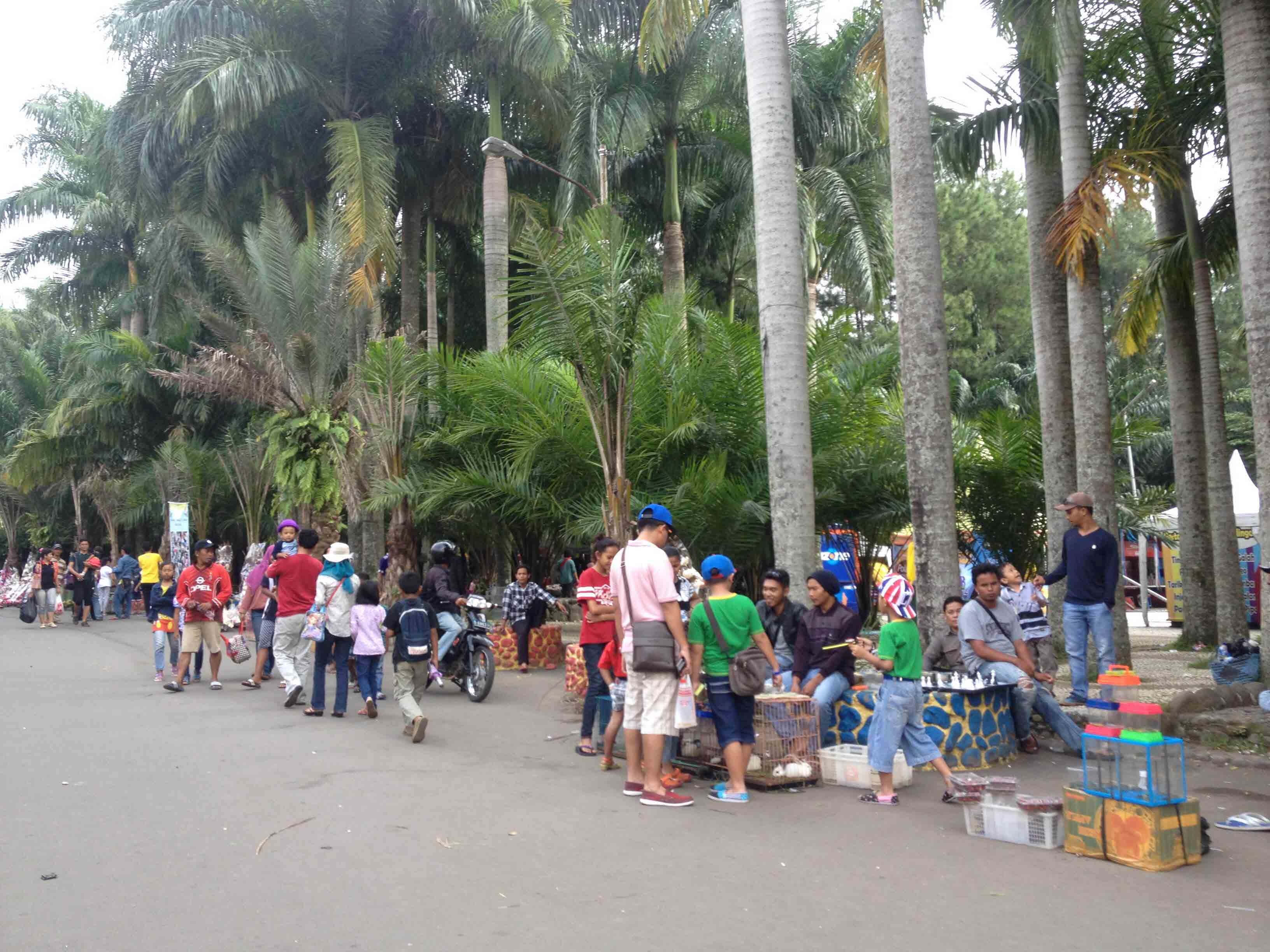 Liburan Wisata Camplong Dipadati Pengunjung Poskota News Taman Matahari Ramai