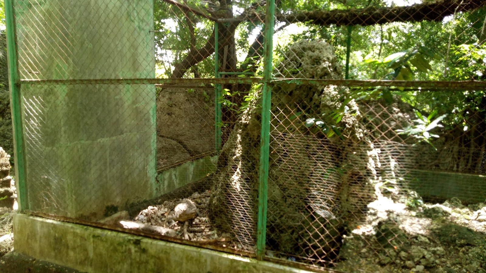 Oenaek Mata Air Wisata Alam Camplong Kian Sekarat Matatimor Tempat