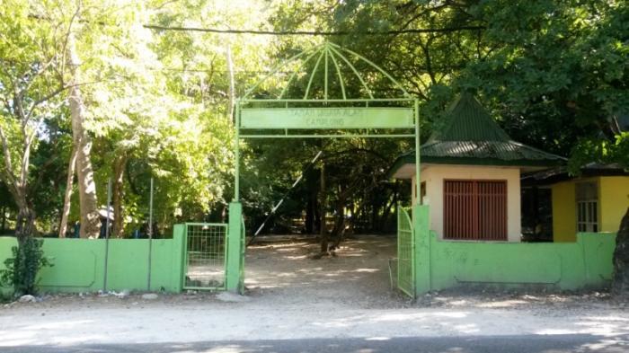 Taman Wisata Alam Camplong Kupang Luasnya 600 Hektar Pintu Gerbang
